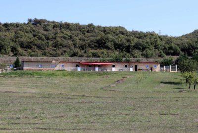 akita-shiba-instalaciones