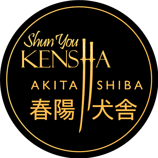 Shun´You Kensha