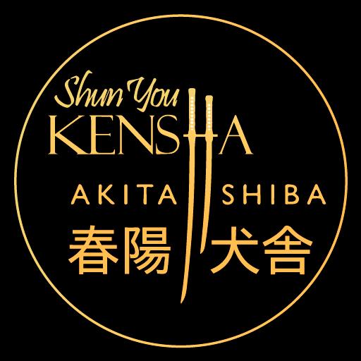🐕 Shun´You Kensha | Selección, cría y venta de Akita y Shiba